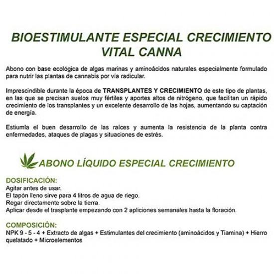 Abono Cannabis Crecimiento